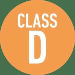 Class D Amp